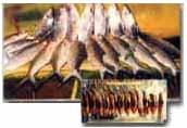 mesin-presto-stainless-steel-5-tokomesin-bogor (4)