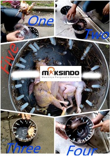 Jual Mesin Pencabut Bulu Burung Puyuh – Merpati di Bogor