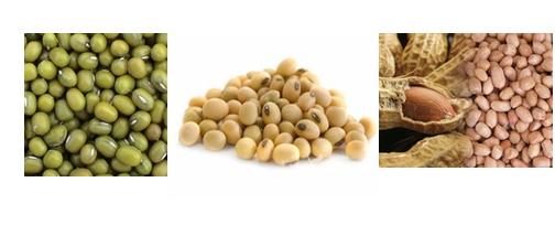 Mesin-Pulp-Grinder-Pembubur-Kacang-Kacangan-3-maksindobogor (3)